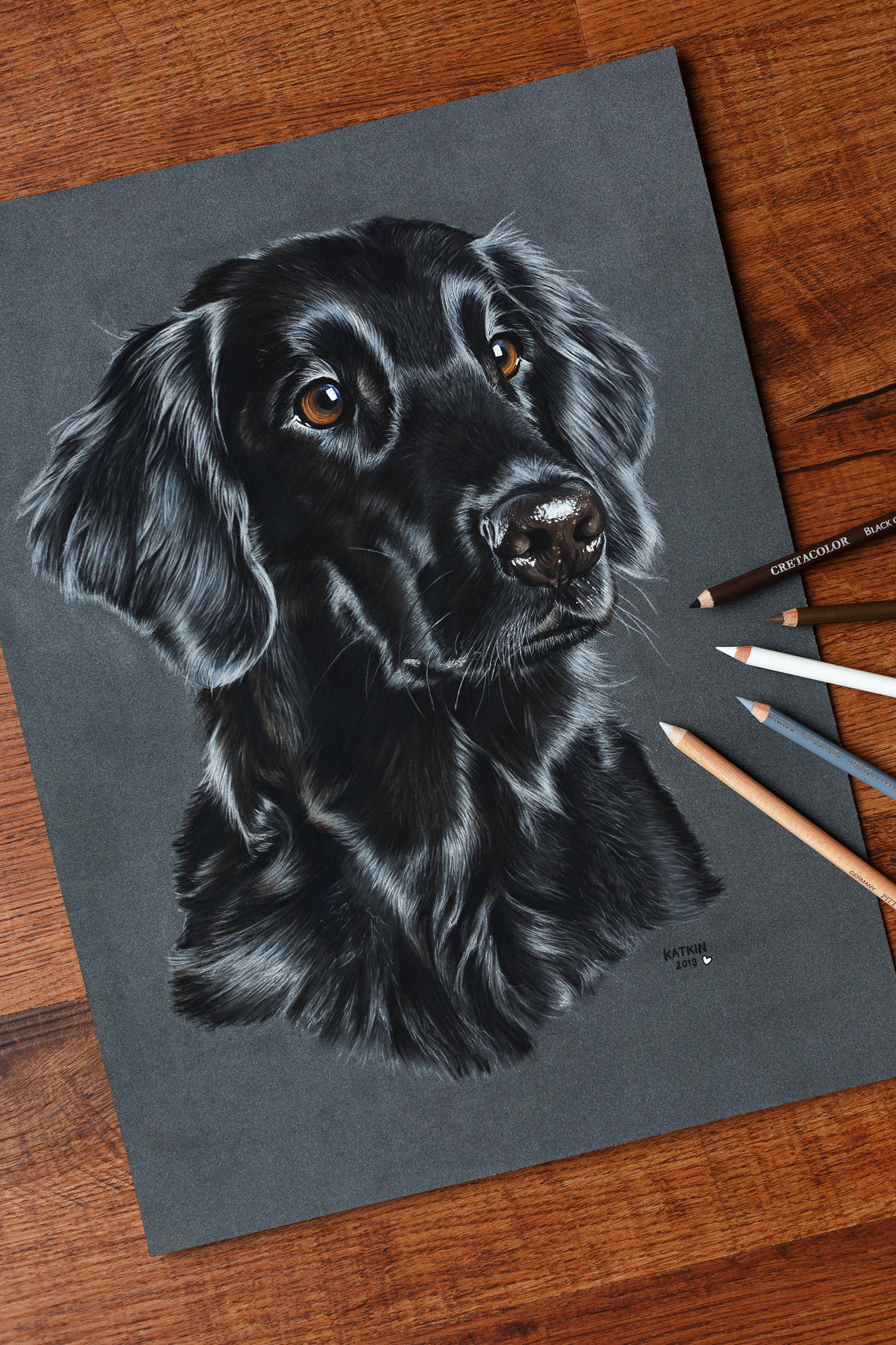 Flatcoated Retriever Aenna, 30x40 cm