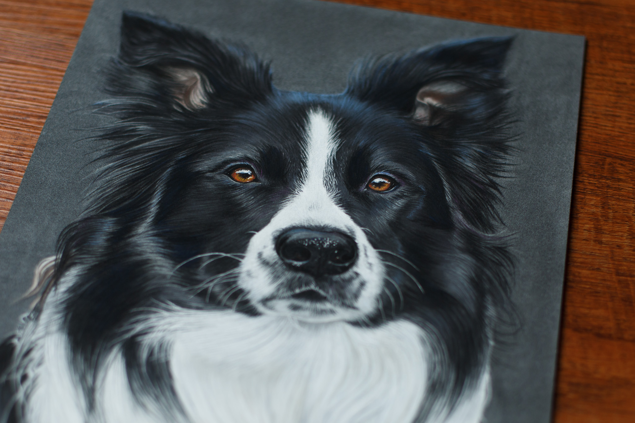 Caesar Portrait, 24x30 cm