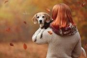 Herbstharmonie