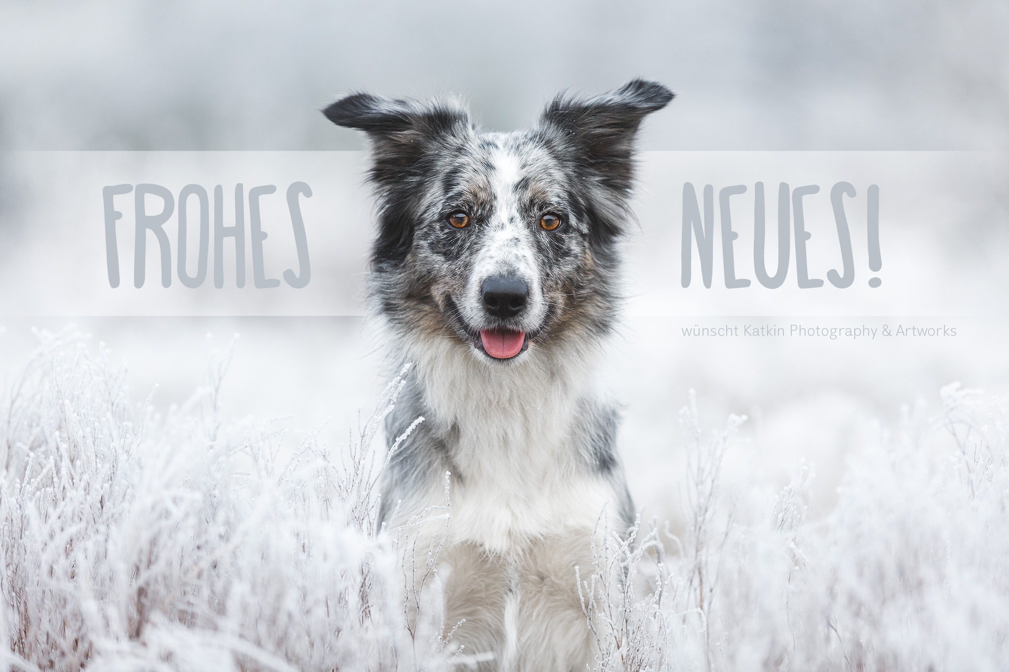 Rumie Frohes Neues